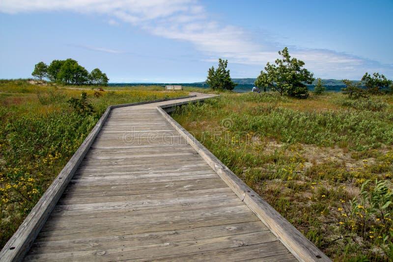 Download Plage de promenade photo stock. Image du path, écosystème - 56489774
