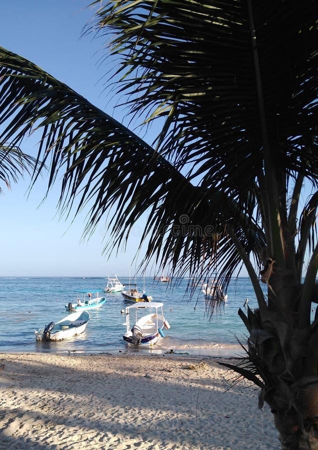 Plage de Puerto Morelos de paysage photos libres de droits