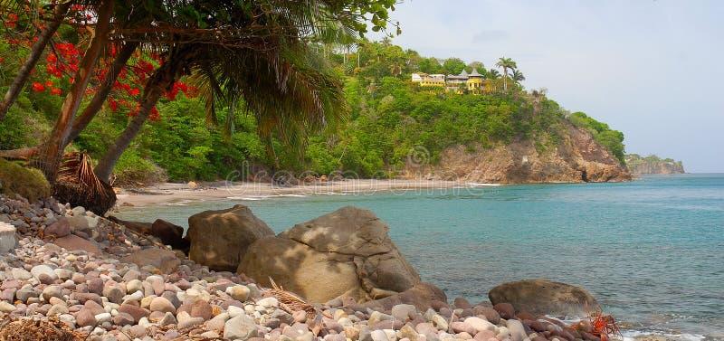 Plage de régions boisées, Montserrat image libre de droits