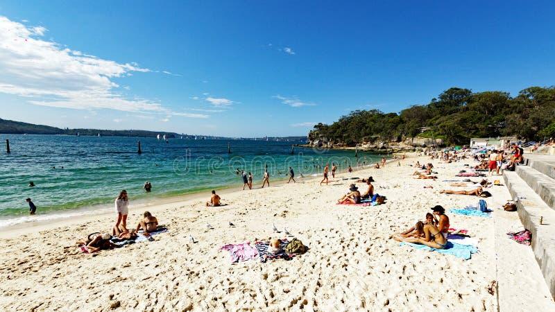 Plage de requin, Nielsen Park, Vaucluse, Sydney, Australie image libre de droits