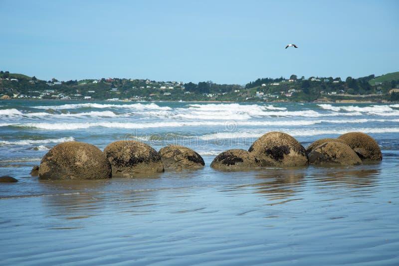 Plage de rochers de Moeraki au Nouvelle-Zélande images libres de droits