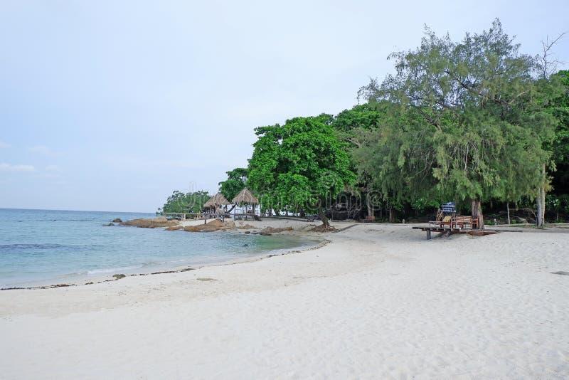 Plage de sable d'océan avec ciel bleu forêt tropicale humide image libre de droits