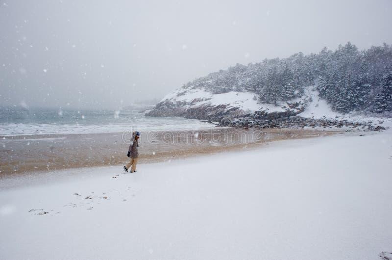 Plage de sable pendant une tempête de neige photo libre de droits