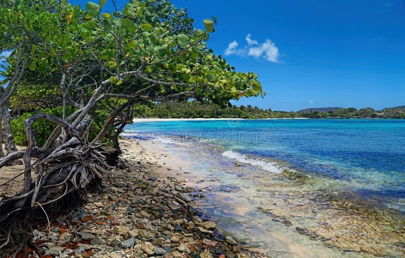 Plage de saphir sur l'île de St Thomas images libres de droits