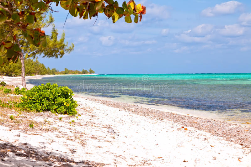 Les Îles Caïman photos stock