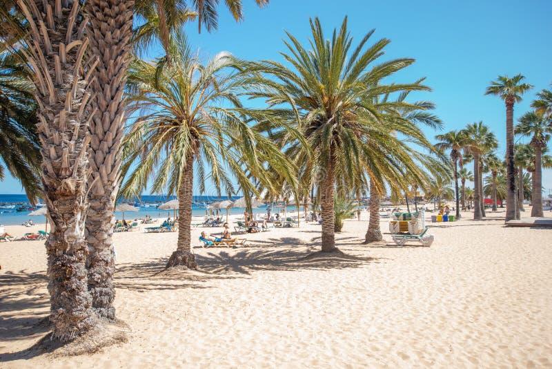 Plage de Ténérife, Îles Canaries, Espagne-Las Teresitas près de San et images stock