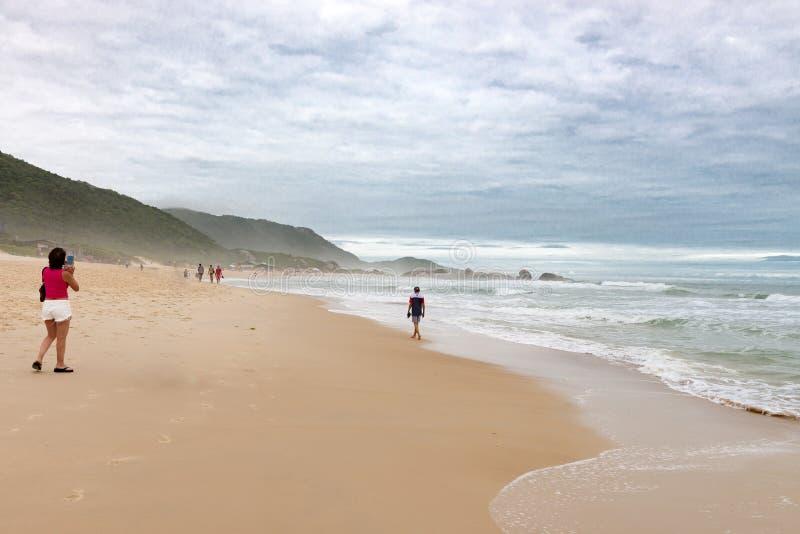 Plage de taupe dans Florianopolis, Santa Catarina, Brésil photo libre de droits