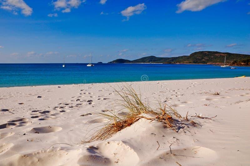 Plage de Whitehaven sur les îles de Whitsunday images libres de droits