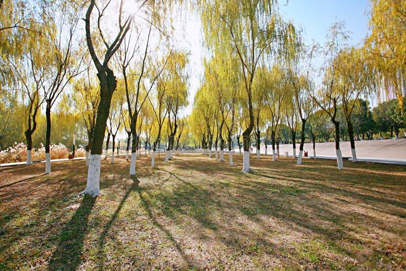 Plage de Wuhan Wuchang photos libres de droits