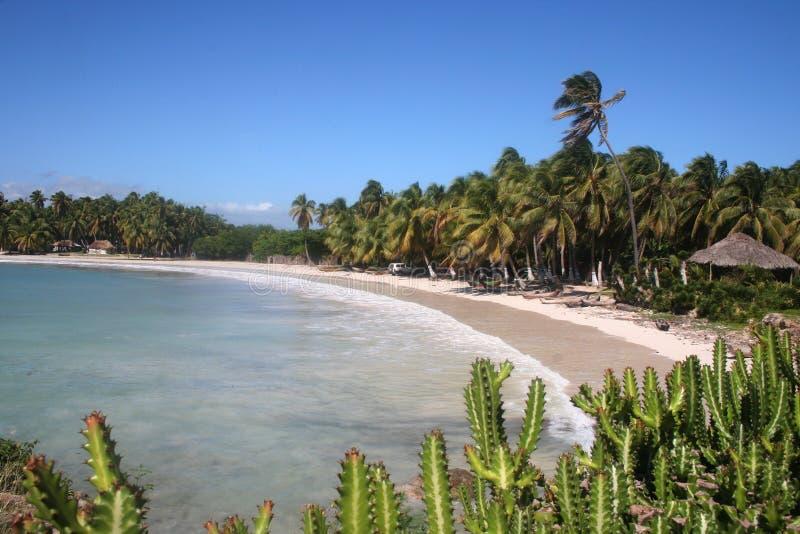 Plage des Caraïbes images libres de droits