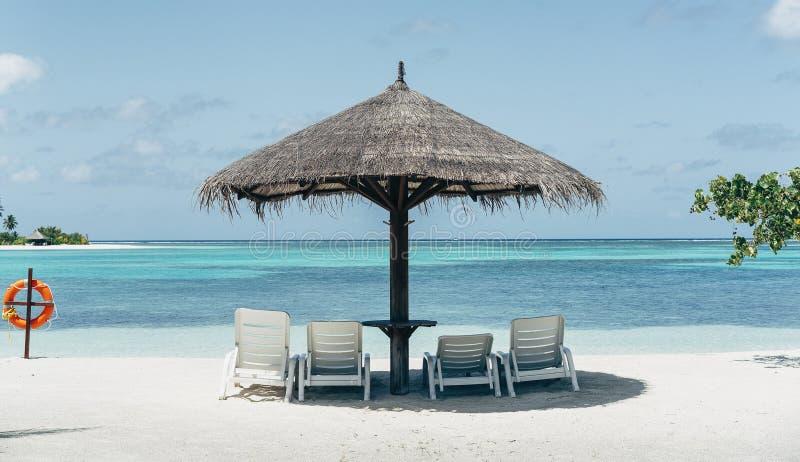Plage des Caraïbes de paradis avec le parapluie et les hamacs photos libres de droits