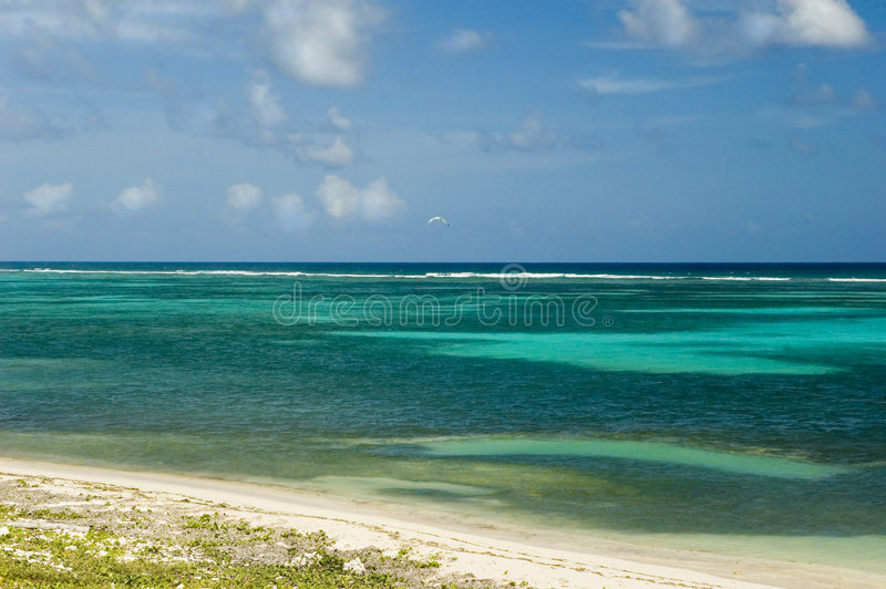 Plage des Caraïbes verte image stock