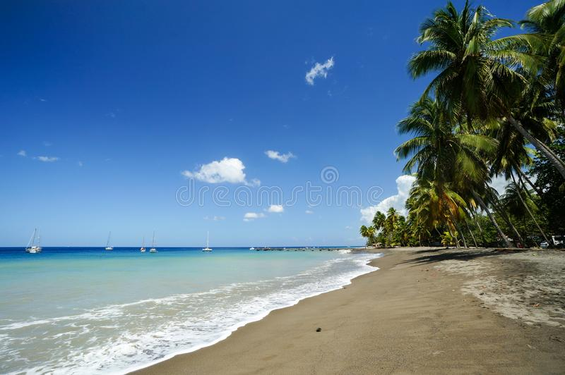 Plage du Carbet, Martinique arkivbilder