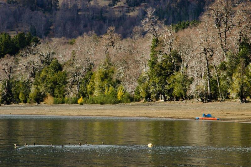 Plage du lac images libres de droits