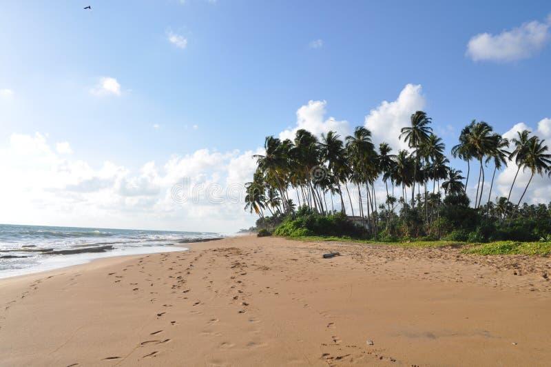 Plage du Sri Lanka photographie stock libre de droits