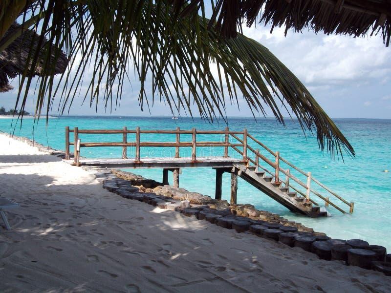 Plage en île de paradis de Zanzibar photos libres de droits