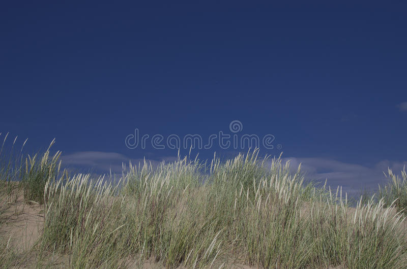 Plage ensoleillée avec les dunes de sable et le ciel bleu image libre de droits