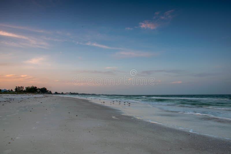 Plage et constructions de la Floride images libres de droits