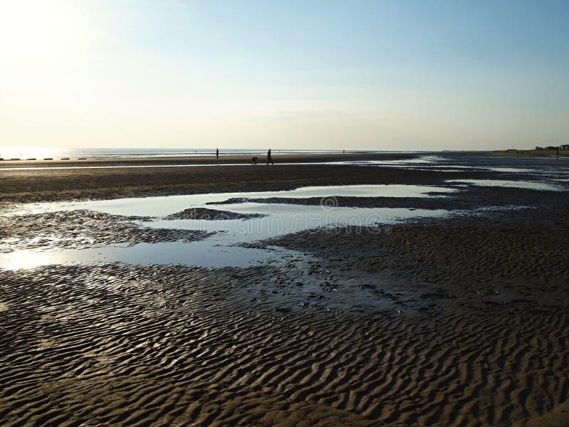 Plage plage-glorieuse de Formby avec les dunes de sable dramatiques, entourées en balayant les bois du pin côtiers image libre de droits
