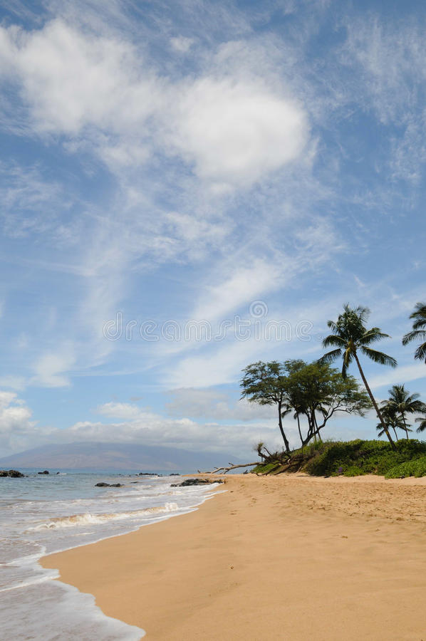Plage Hawaï de Maui photo stock