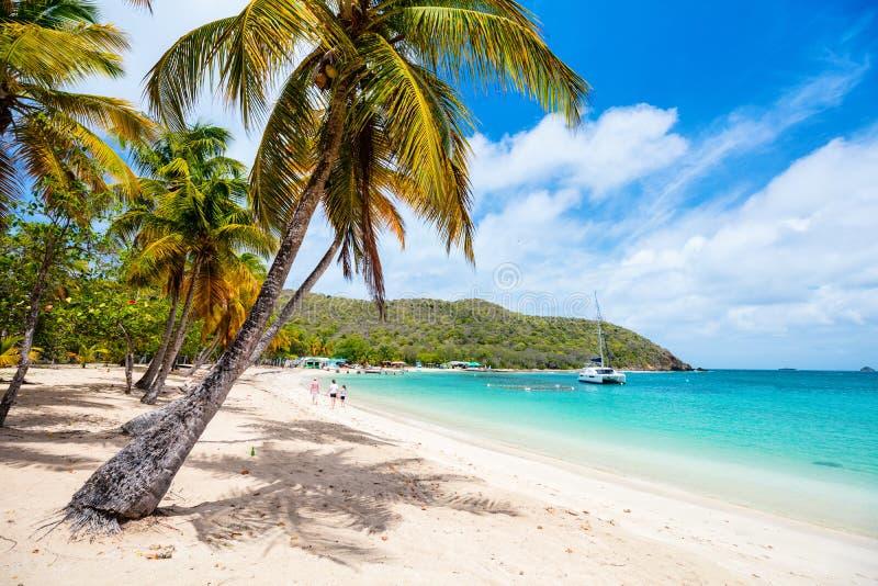 Plage idyllique chez les Caraïbe photos libres de droits