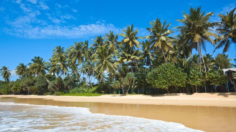 Plage idyllique. Le Sri Lanka photos libres de droits