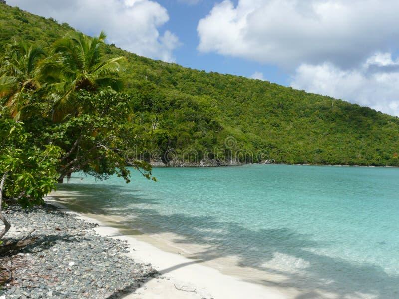 Plage la Caraïbe de turquoise   photos stock