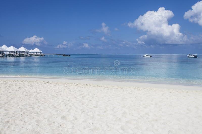 plage Maldives photo stock