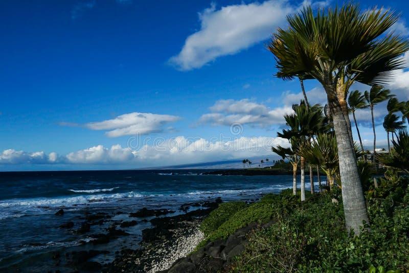 Plage noire de sable en grande île image libre de droits