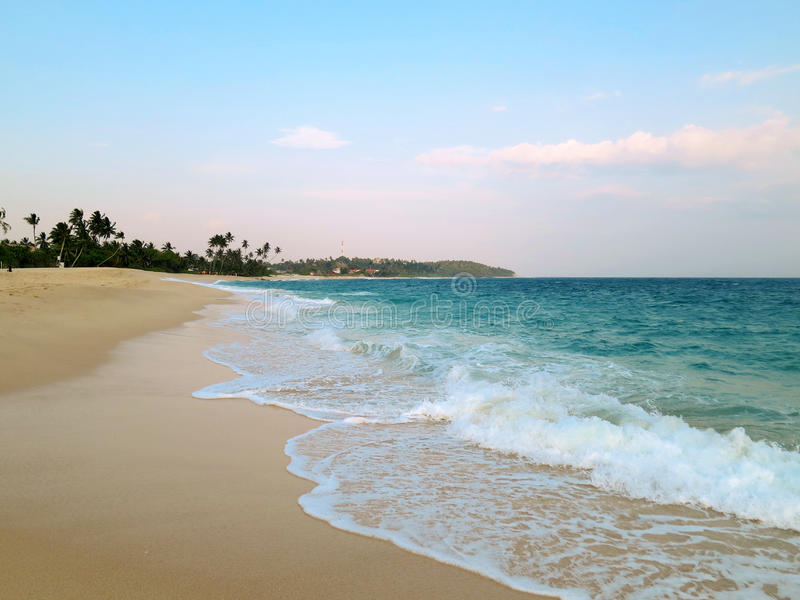Plage propre large vide avec des paumes, Mirissa, Sri Lanka photos libres de droits