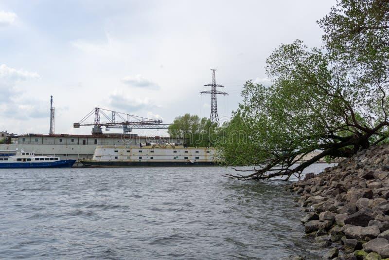 Plage rocheuse avec l'arbre et les bateaux Vue de plage rocheuse Sc?ne de plage Vue de plage Kyiv, Ukraine photographie stock libre de droits