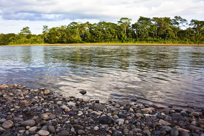 Plage rocheuse sur la rivière de Napo photographie stock