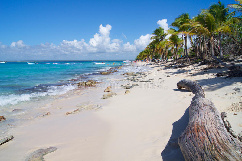 Plage romantique dans les Caraïbe en République Dominicaine  photo libre de droits