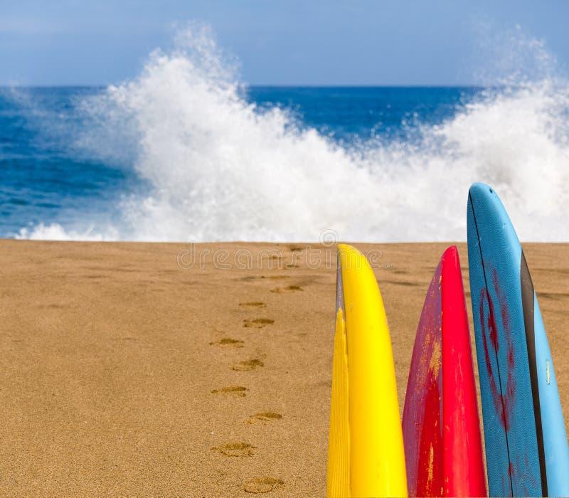 Plage sablonneuse avec des planches de surf à arroser photographie stock