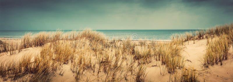 Plage sablonneuse avec les dunes et la mer photographie stock