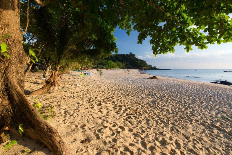 Plage sauvage tropicale tranquille photo libre de droits