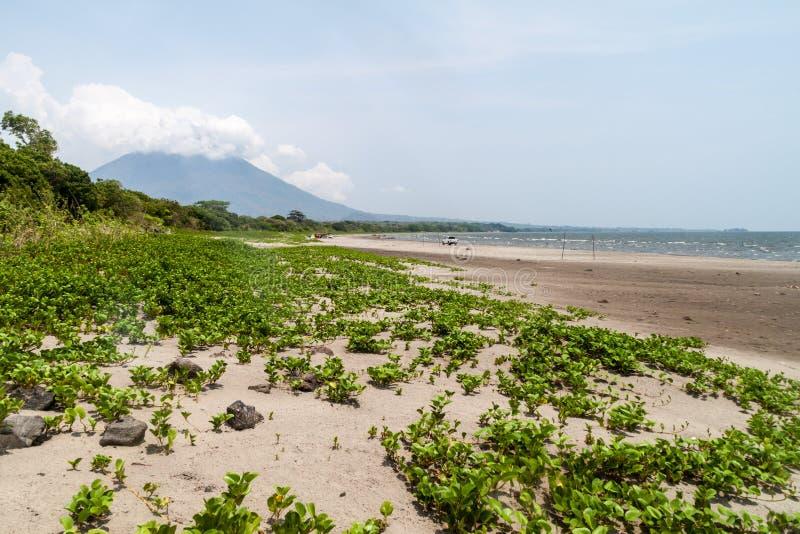 Plage sur l'île d'Ometepe, Nicarag images stock