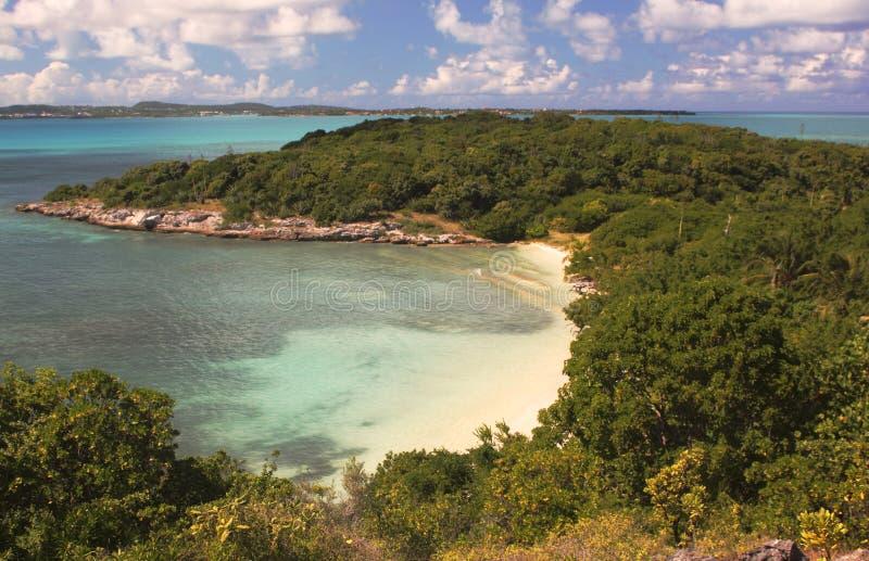 Plage tropicale à l'île d'oiseau grande, Antigua, la COMMUNAUTÉ EUROPÉENNE photographie stock