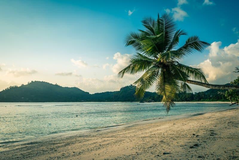 Plage tropicale à l'île Seychelles de Mahe photo stock