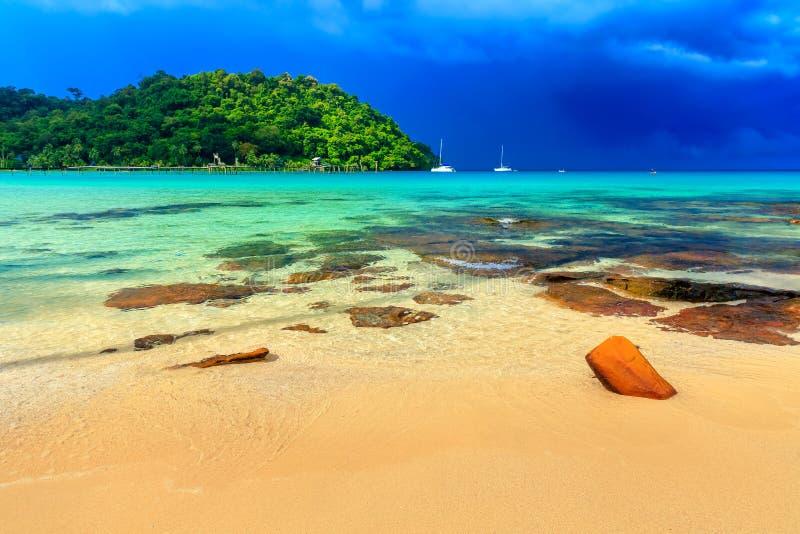 Plage tropicale étonnante avec la paume sur l'eau de mer de fond et le ciel bleu coloré sur l'horizon images libres de droits