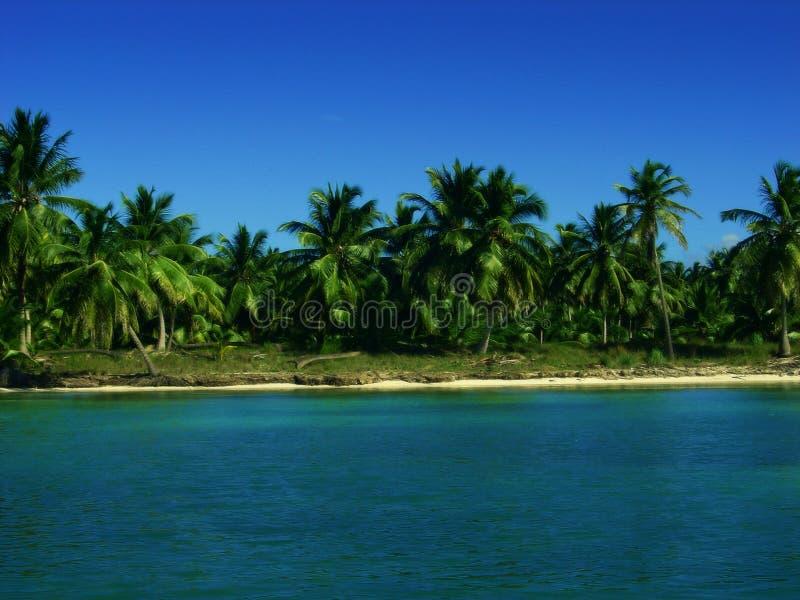 Plage tropicale photo libre de droits