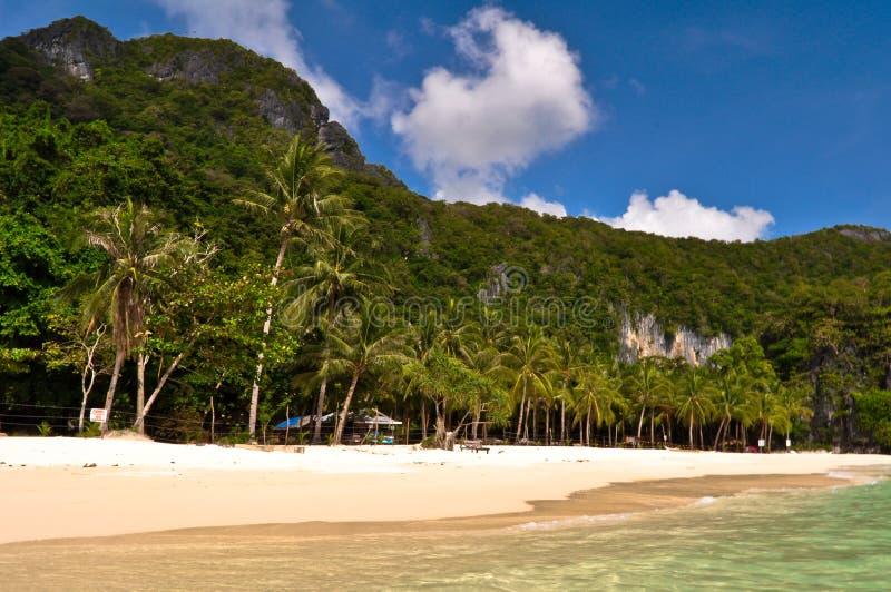 Download Plage tropicale image stock. Image du climate, course - 45350569