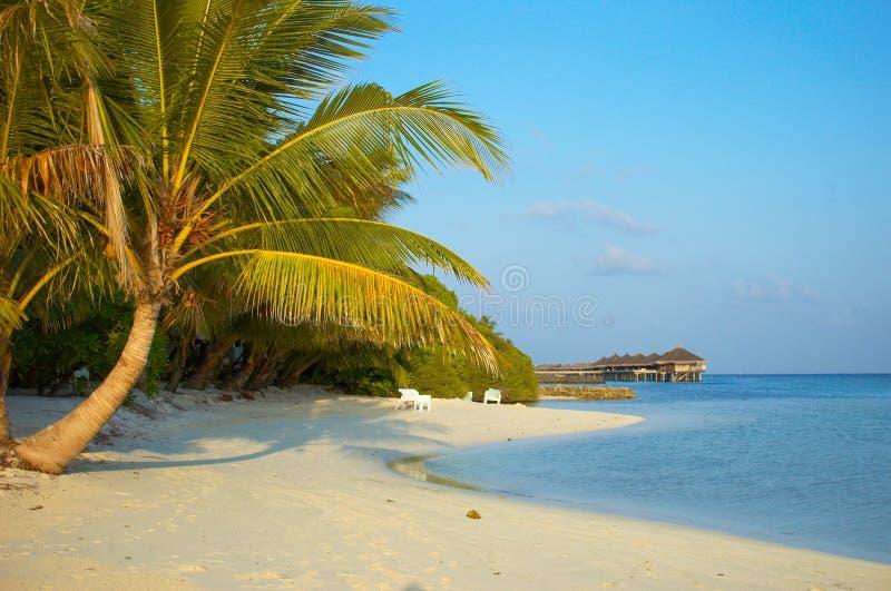 Plage tropicale photos stock