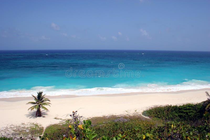 Download Plage tropicale image stock. Image du caribbean, vacances - 745307