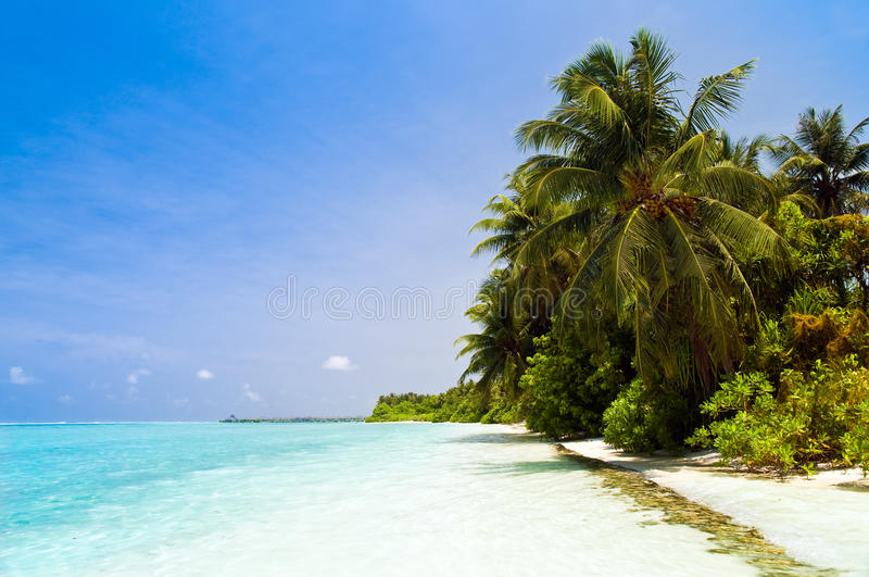 plage tropicale images stock