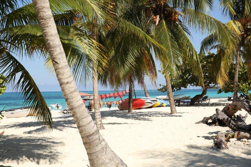 Plage tropicale avec des palmiers et des bateaux sur la plage blanche de sable avec l'espace pour le texte image stock