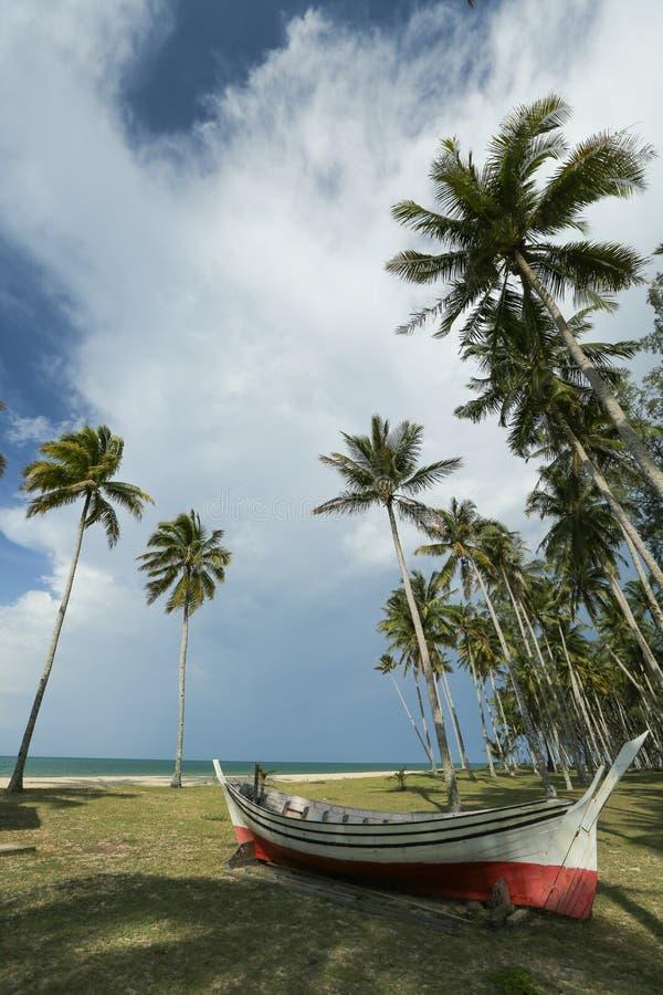 Plage tropicale avec des paumes photographie stock libre de droits