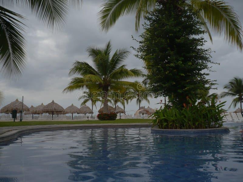 Plage tropicale avec les arbres et la piscine photographie stock