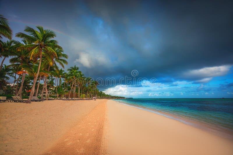 Plage tropicale dans Punta Cana, République Dominicaine  Palmiers sur l'île arénacée dans l'océan images stock