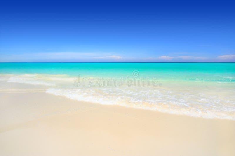 Plage tropicale de sable blanc idyllique photo libre de droits